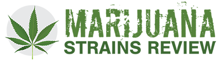 Marijuana Strains Review logo